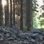 Zavírka – pravěký val a nová fakta II. díl