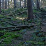 Kamenné schody – překvapení v Brdech